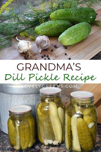Dill Pickle Recipe Recipe Dill Pickle Recipe Pickling Recipes Grandma S Dill Pickle Recipe