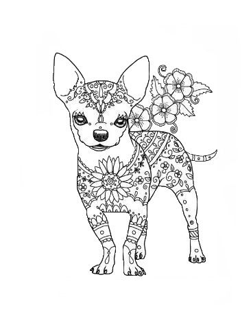 Omeletozeu Coloring Books Chihuahua Drawing Dog Coloring Page