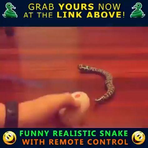 Remote Control Funny Joke Snake Toy