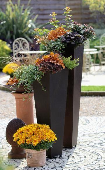 Herbstbepflanzung für Töpfe und Kübel | Gardens, Planters and ...