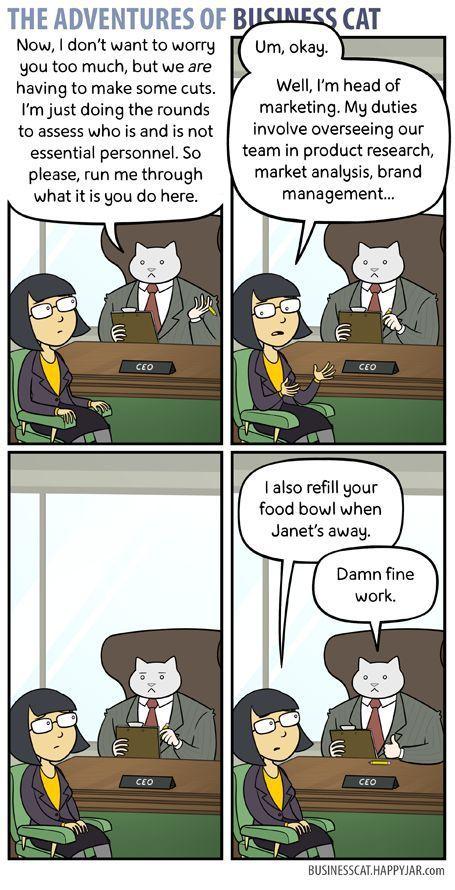 Cat Memes Cartoon 2 Business Cat Funny Comics Business Cat Meme