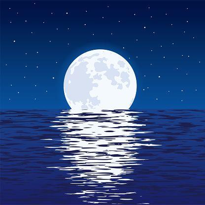 Imagen Gratis En Pixabay Luna Reflejo Flamenco Animal Ilustracion De Mar Mar Animado Ilustracion De Noche