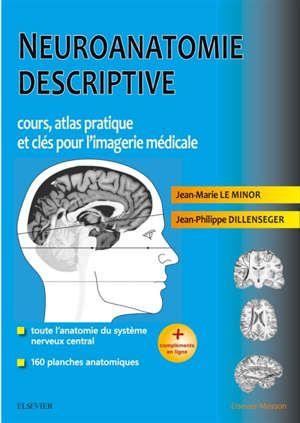 Une Synthese Sur La Neuroanatomie Qui Decrit La Morphologie Generale La Moelle Spinale Le Tronc Cerebral Le Cer Imagerie Medicale Medical Planche Anatomique