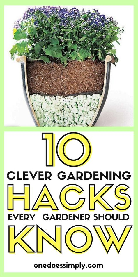 Need some gardening ideas to try? Check out these awesome gardening hacks! Try these gardening hacks and make gardening more fun!