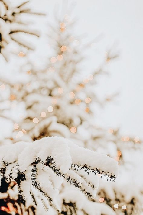 A beautiful scene that I would welcome with open arms! #Winter #WhiteLights #Chr...