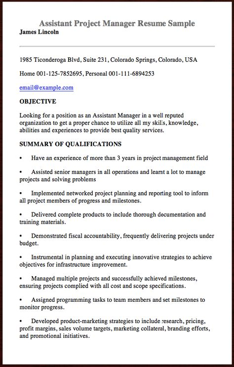 Here Is The Assistant Project Manager Resume Sample You Can - project manager resume sample
