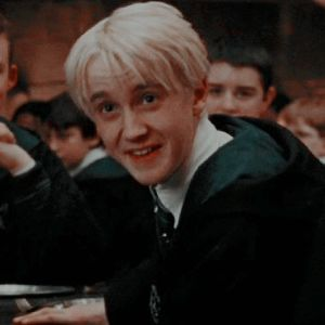 stuff — draco malfoy and hermione granger icons // order. Draco Harry Potter, Harry Potter Icons, Mundo Harry Potter, Harry Potter Characters, Draco Malfoy Memes, Draco Malfoy Imagines, Draco Malfoy Aesthetic, Slytherin Aesthetic, Tom Felton