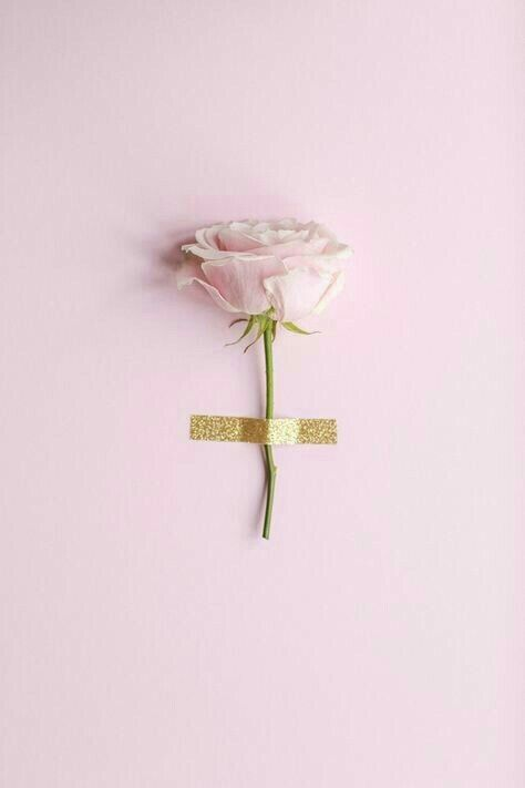 Pink Flowers And Aesthetic Image Pastel Pink Aesthetic Pink Aesthetic Pink Wallpaper