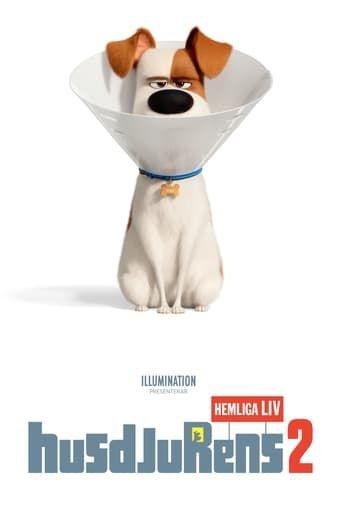 The Secret Life Of Pets 2 Streaming Vf Film Complet Hd Streamcomplet Film Streaming Secret Life Of Pets Secret Life Full Movies