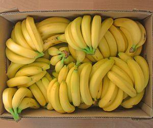 تفسير حلم اكل الموز رؤيا الموز في المنام لابن سيرين Banana Benefits Banana Food