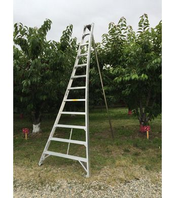 Aluminum Orchard Ladder 12 Ft Wilco Farm Stores Ladder Farm Aluminum
