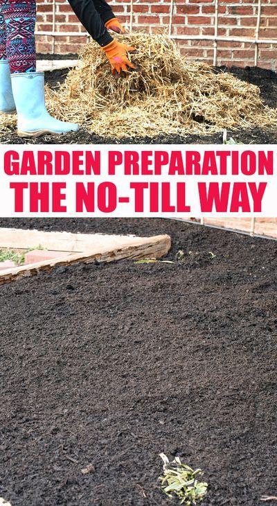 Pin On Vegetable Garden