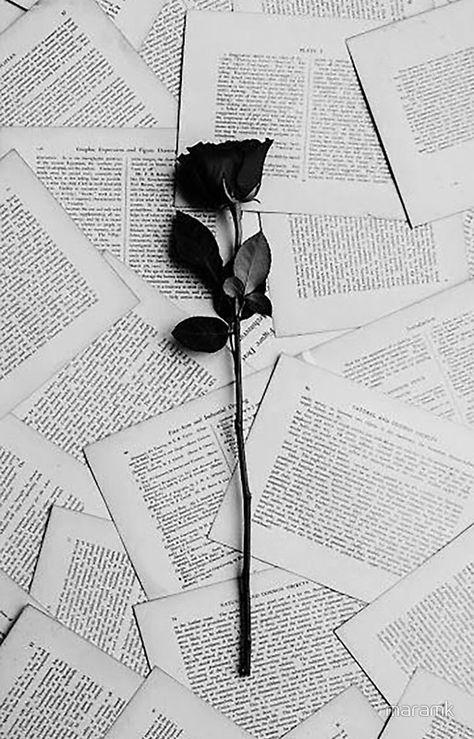 Wallpaper Rose Frases New Ideas