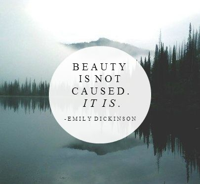 Top quotes by Emily Dickinson-https://s-media-cache-ak0.pinimg.com/474x/62/57/1f/62571f2afc040cb1816de629cb45c4b3.jpg