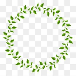 Green Leaves Decorative Circle Decorative Olive Branch Green Leaves Vector Circle Leaves Vector Png Transparent Clipart Image And Psd File For Free Download Digital Flowers Flower Wallpaper Alphabet Design