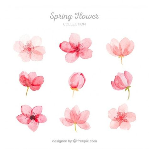 More than a million free vectors, PSD, photos and free icons. More than a million free vectors, PSD, photos and free icons. Exclusive freebies and all graphic resources that you need for your projects Watercolor Flowers Tutorial, Flower Tutorial, Simple Watercolor Flowers, Art Floral, Flower Graphic, Floral Flowers, Watercolour Painting, Floral Watercolor, How To Watercolor