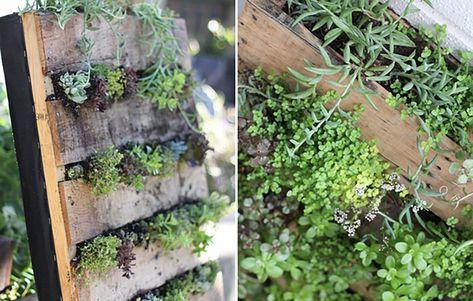Pallet Gardencountryliving