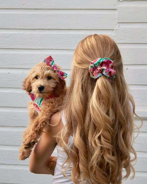 Dog mom. Matching puppy bandana, bow, and scrunchie! #watermelon #dogmom #puppy #minigoldendoodle Use code MAEVE15 for 15% off at Little Shop Joy!  https://littleshopjoy.com/   Maeve (@mini.maeve) • Instagram photos and videos
