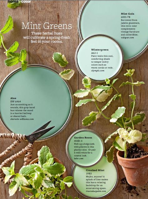 """Mint Green Paint Colors - On-trend, but completely livable, take a cue from these mint green paint colors to soothe any room. """"Mint greens are happy colors that work in a lot of different climates,"""" designer Paige Sumblin Schnell says, as long as the room gets plenty of bright daylight. She favors shades of mint with more blue in them. To find the right shade, she fans out paint chips and goes with a mint that neighbors violet, rather than peach."""