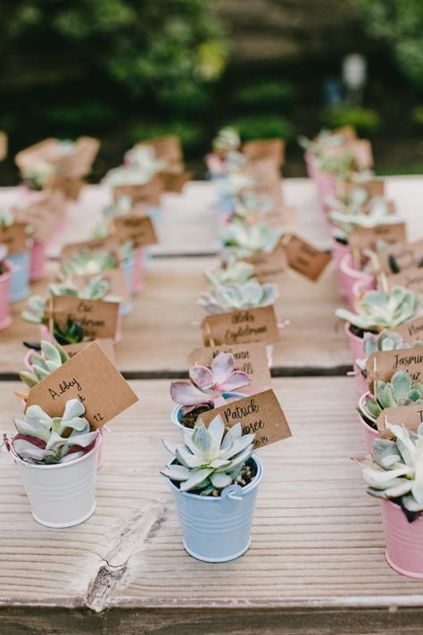 Succulent Wedding Favors || A Romantic Temecula Creek Inn Wedding - Chic Vintage Brides