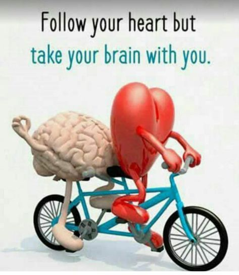 "Fatima Karim on Twitter: ""great advice : follow your heart but take your brain with you… """