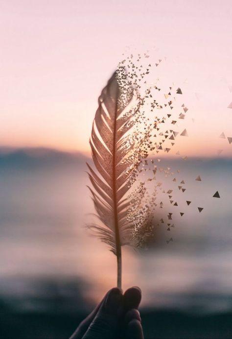 Amor y paz - Salud Y Belleza Natural