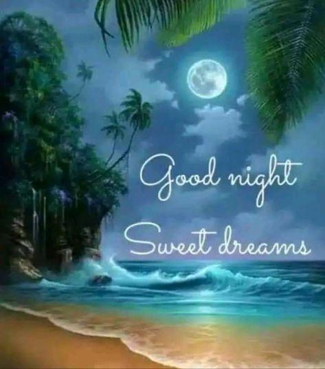 Gooooood night 😴😴😴