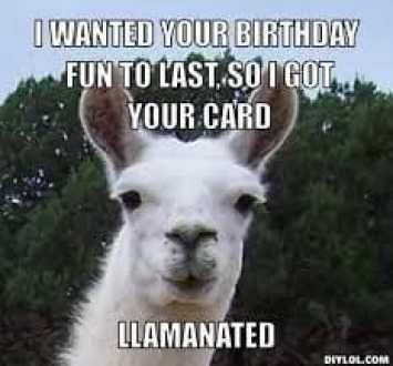 So Punny Llama Pun Meme Happy Birthday Quotes Funny Happy Birthday Funny Happy Birthday Quotes For Him
