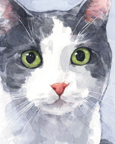 Cat Portrait Custom Watercolor Painting 5x7 by studiotuesday, $120.00