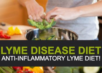 Lyme Disease Diet Anti Inflammatory Lyme Diet Lyme Disease Diet Lyme Disease Lyme Disease Treatment