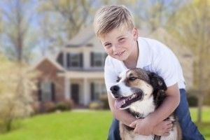 Dogs And Umbrella Insurance In 2020 Dog Friends Dog Friendly