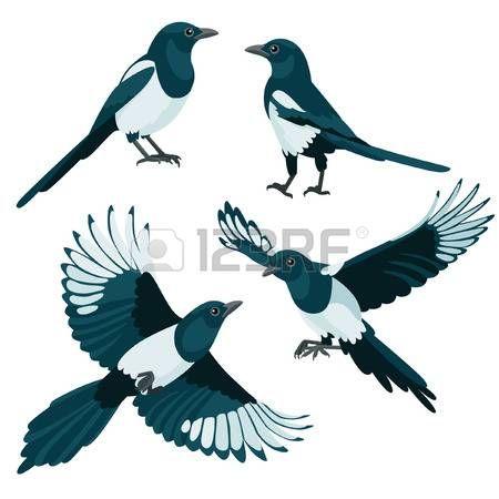 Hay Dos Urracas De Estar Y Dos Urracas Voladores En El Estilo De Dibujos Animados Urraca Estilos De Dibujo Dibujos Animados