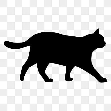 Silueta De Gato Png Gato Png Silueta De Gato Png Y Vector Para Descargar Gratis Pngtree Cat Silhouette Black Cat Silhouette Cat Outline