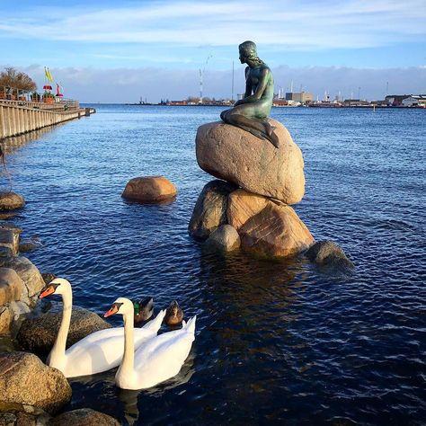 danish You cant go to Copenhagen...