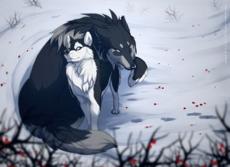 Azzai  Hatsuyuki guess what day is today? Spirit-Of-Alaska is returning from the army. i guess... just little gift 'coz wolf misses this dog.... you are the moon