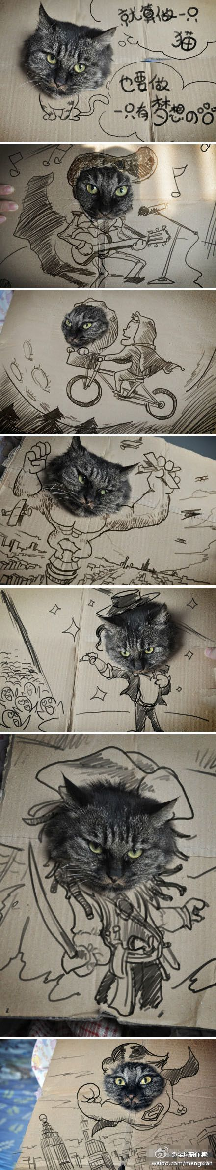 best images about gatos y dibujos on pinterest cats funny and
