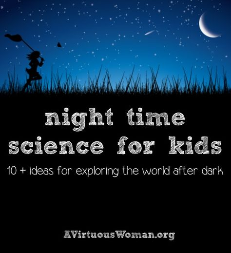 Night Time Science for Kids {10 + Ideas for exploring the world after dark.} | A Virtuous Woman #homeschool #science #summer