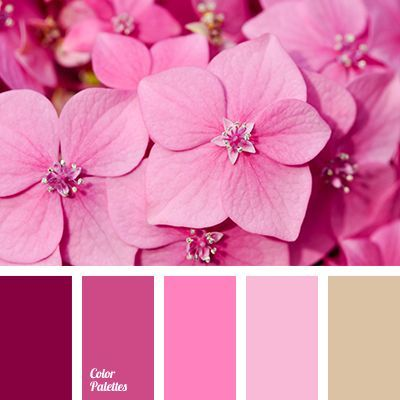 Color Palette 3930 Pink Color Schemes Pink Color Combination