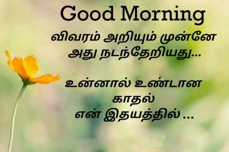 Top 100 Good Morning Images In Tamil Pics Good Morning Tamil Kavithai Good Morning Images Motivational Good Morning Quotes Good Morning Quotes