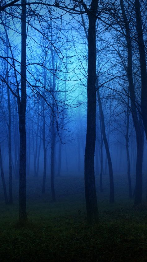 26 Increíbles fondos de pantalla con paisajes naturales