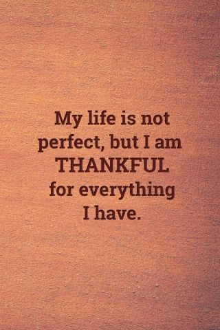 My Life Is Not Perfect But I Am Thankful For Everything I Have Thankful Quotes I Am Thankful Quotes My Life