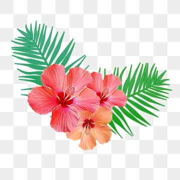 Tropical Palm Leaves Png Png Free Download Palm Tropical Leaves Leaves Png And Vector With Transparent Background For Free Download Grafico Flor Cartoes De Flores Ilustracao De Rosa