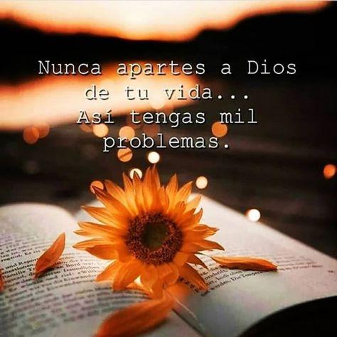 290 Ideas De Dios En 2021 Dios Cielo Y Tierra Mensaje De Dios
