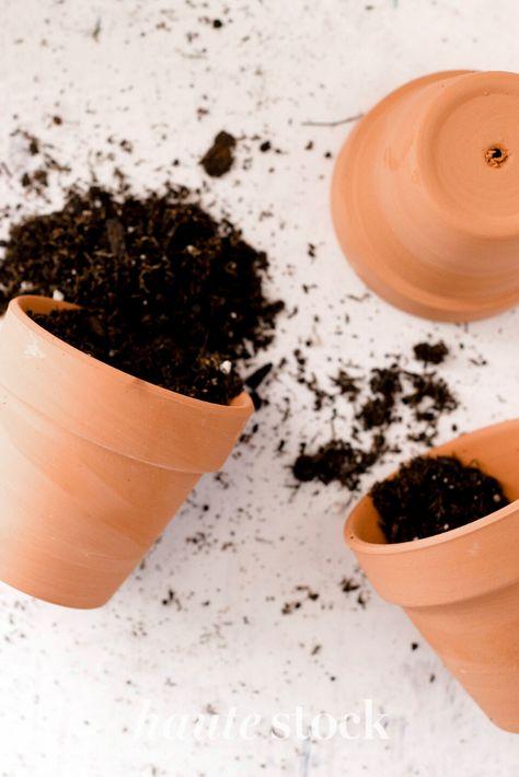 Family gardening in backyard styled stock photography featuring soil and pots for planting flatlay. #hautestock #lifestyle #stockphotography #blogging #socialmedia #femaleentrepreneur #marketing #businessowner #branding #gardening #familytime #summer #plants #homegardening #backyard #outdoor