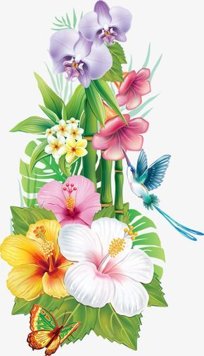 Flowers Hummingbird Hummingbird Clipart Flowers Beautiful Png Transparent Clipart Image And Psd File For Free Download Flower Drawing Hawaiian Flower Drawing Flower Painting