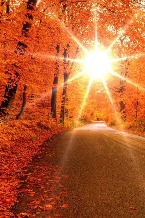 Winding roads + autumn sunsets. <3