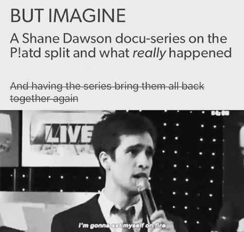 Shane DID say he would love to do this on Twitter