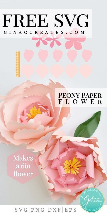 Peony Paper Flower Paper Flowers Paper Peonies Flower Template