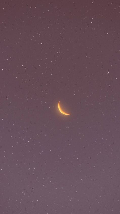 Crescent moon in the pink sky by matialonsor