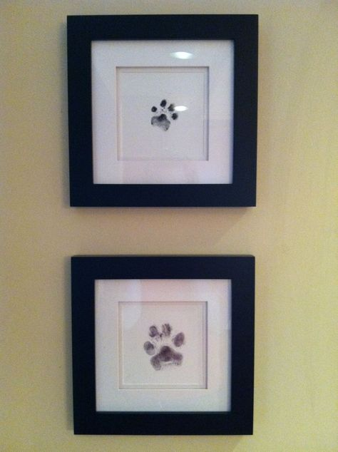 Paw decor. #homedecor Anything for pets
